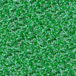 Green Buxus Fence — Stock Photo