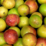 Camu camu fruits — Stock Photo