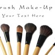 Makeup brush set isolated — Stock Photo #31252593