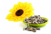 Sunflower seeds isolated — Stock Photo