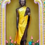 Buddha statues — Stock Photo #31535027