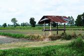 A little hut in farm — Stock Photo