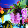 Beautyful Orchid plastic — Stock Photo