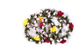 Flower Crown isolated — Stock Photo