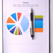 Graphs and Charts Report — Stock Photo #35666013