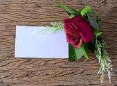 Prázdný papír karta s jarní květy — Stock fotografie