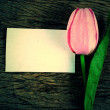 Purple tulips and blank card — Stock Photo