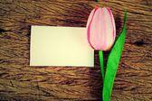 Paarse tulpen en lege kaart — Stockfoto