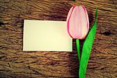 Purple tulips and blank card — Stock Photo