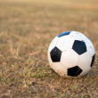 Soccer ball on the grass — Stockfoto