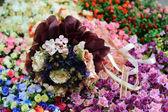 Różnego rodzaju kwiaty — Zdjęcie stockowe