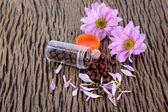 Flower pills — Stock Photo