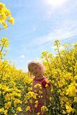 Happy toddler girl in rape seed field — Stock Photo