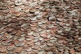 Coins in a tree trunk. — Stock Photo