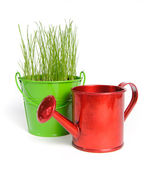 One colored bucket with grass and red water can — Stock Photo