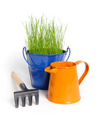 Garden grass in colour bucket — Stock Photo