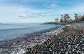Cena de praia cheia de pedras no litoral — Foto Stock