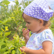 Adorable little girl eating berries — Stock Photo