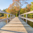Wooden bridge in autumnal park — Stock Photo