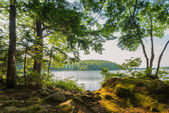 Vid sjö — Stockfoto
