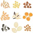 Cereals grains icon set — Stock Vector #38086815