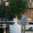 Walking newlyweds — Stock Photo #24386747