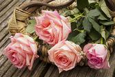 Vier rozen in een mand — Stockfoto