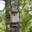 Birdhouse — Stockfoto #24735079
