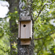 Birdhouse — Foto Stock #24735079
