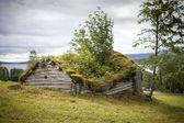 Starej drewnianej szopie — Zdjęcie stockowe