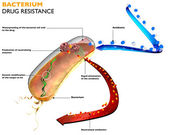 Resistance of bacteria to antibiotics — Stock Photo