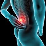 Man backache pain x-ray skeleton — Stock Photo #39126313