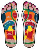 Foot plant health — Stock Photo