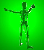 Human body by X-rays — Stock Photo