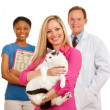 Stock Photo: Veterinarian: WomHolds Cat with Vet Behind