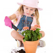 Gardener: Putting Dirt into Pot — Stock Photo #24434491