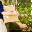 Stock Photo: Delivery: Taking Packages to Front Door