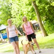 Park: Women Walking in Park - Stock Photo