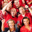 Stock Photo: Fans: Male Friends Cheer on Team