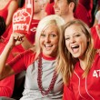 Fans: Two Friends at the Game — Stockfoto