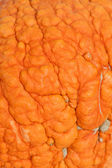 Pumpkin: Bumpy Texture Pumpkin Skin — Stock Photo
