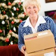 Christmas: Ready To Ship Holiday Packages — Lizenzfreies Foto