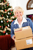 Christmas: Ready To Ship Holiday Packages — Stock Photo