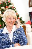 Christmas: Senior Woman Talking To Friend — Stok fotoğraf