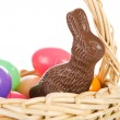 Rabbit: Chocolate Bunny In Easter Basket — Stock Photo