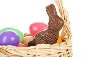 Rabbit: Chocolate Bunny In Easter Basket — Zdjęcie stockowe