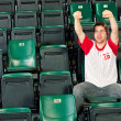 Fans: Solo Fan Cheers for Team — Stock Photo #47544353