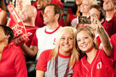 Fans: Friends Take Photo of Selves at Baseball Game — Stockfoto