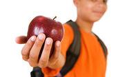 Student: Apple For the Teacher — Stock fotografie