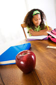 Student: Girl Doing Homework — Foto Stock
